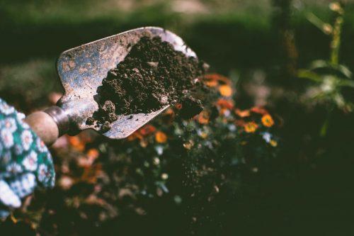 Je tuin verbouwen zo doe je dat!